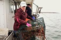 Film over samenwerking met vissers wint prijs