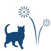Vuurwerkangst bij katten