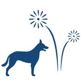 Vuurwerkangst bij honden