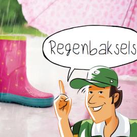 Regenbaksels