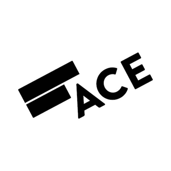 Apply for the Ace Incubation Program Spring 2021