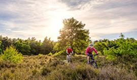 Ontdek de omgeving op uw fiets