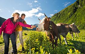 Heerlijk wandelen in Oostenrijk
